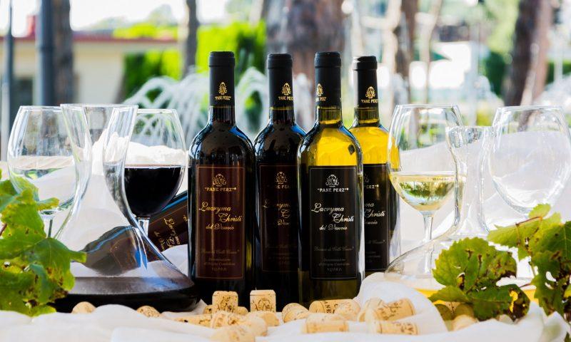 Viaggio alla scoperta dei vini campani