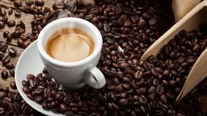 Alla scoperta del caffè
