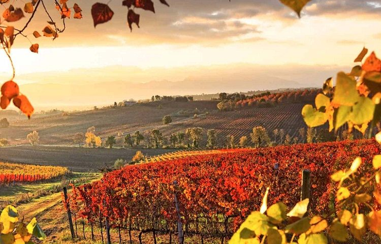 Sagrantino e Medioevo nel cuore dell'Umbria