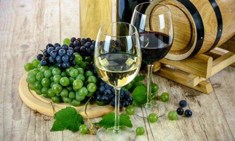 Come evitare di compiere errori quando si deve scegliere il vino